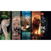 """Серия """"Wild animals"""""""
